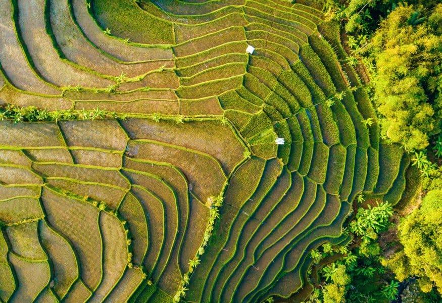 Luxusreisen Indonesien